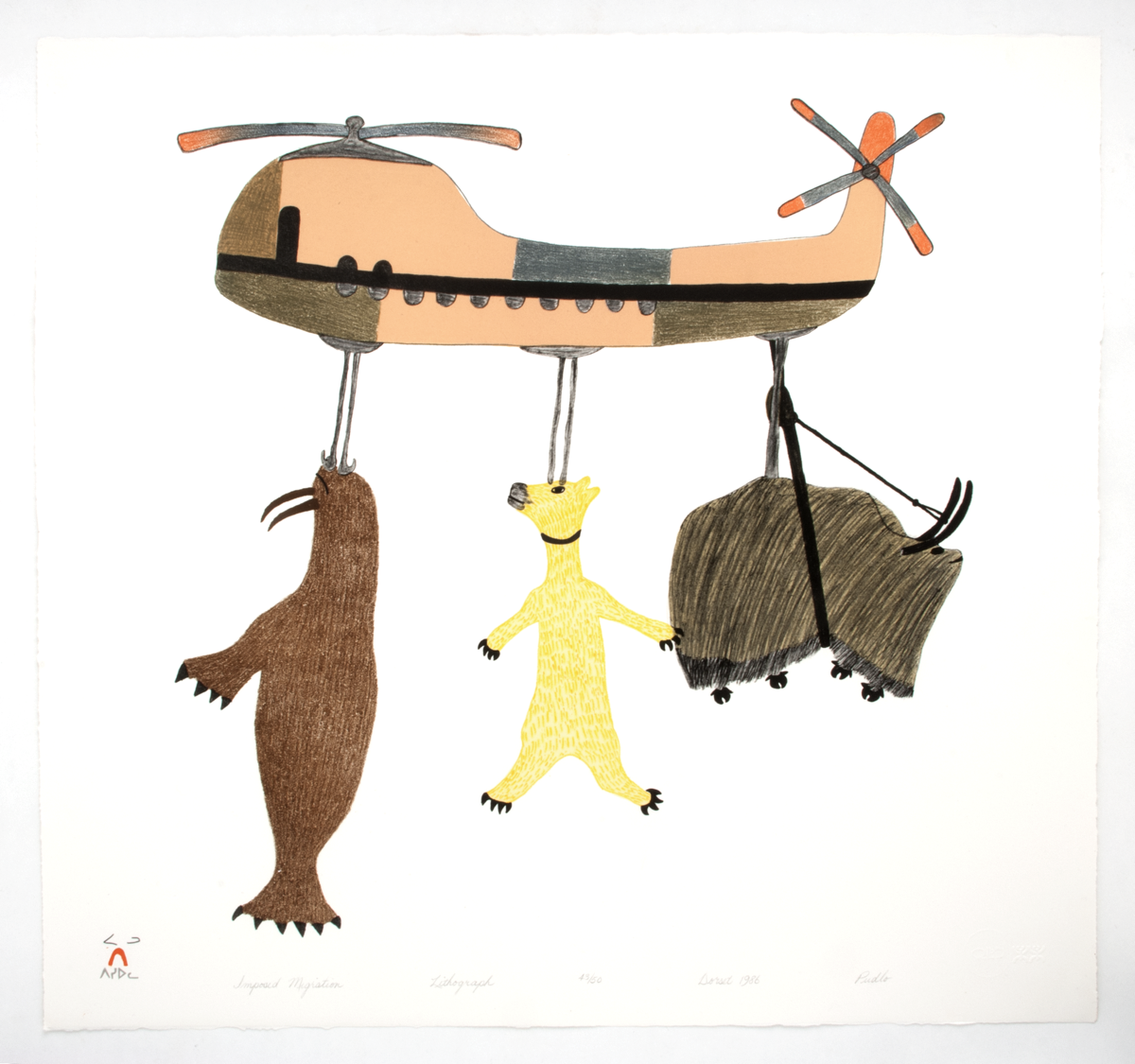 Lithograph titled 'Imposed Migration' by Pudlo Pudlat. The print shows a walrus, a polar bear, and a musk ox suspended from an orange chinook helicopter