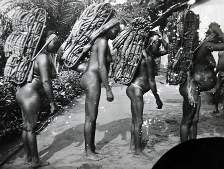 A black and white photo of women carrying large loads of kwanga, pre 1905.