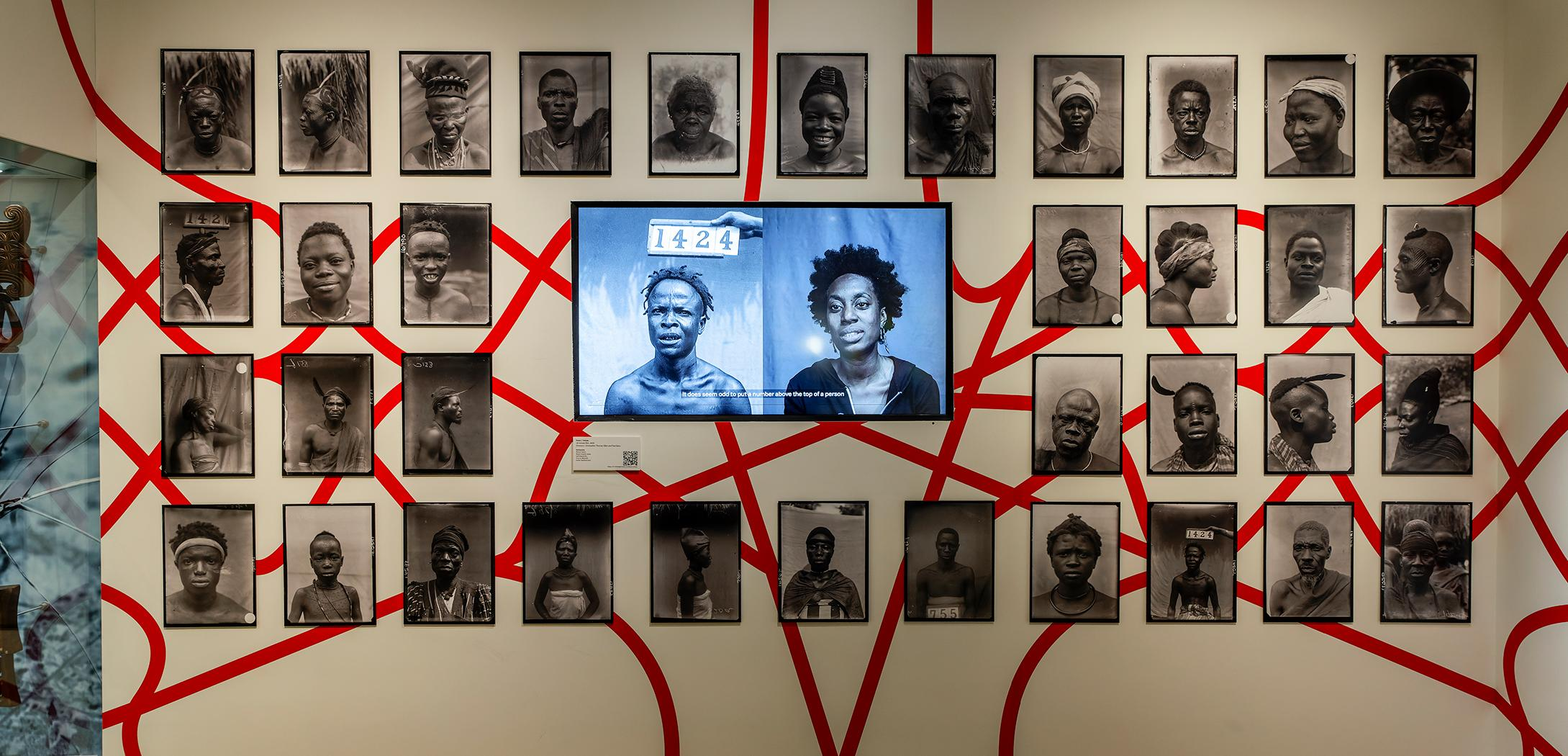 An installation image of the ReEntanglements exhibition, showing a video screen surrounded by black and white photographs of people from Northcote Thomas's expedition. The background shows a red line weaving through the space, inspired by string games.